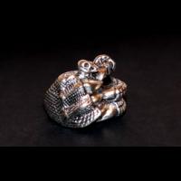 Forma gyűrű sárkánykarom