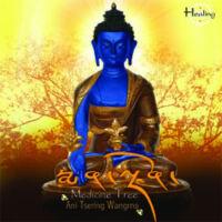 Gyógyító Buddha Medicine Tree CD